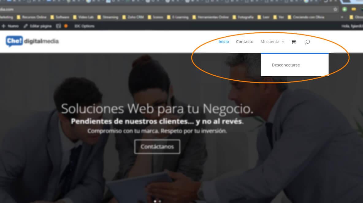 Menu Roles WordPress